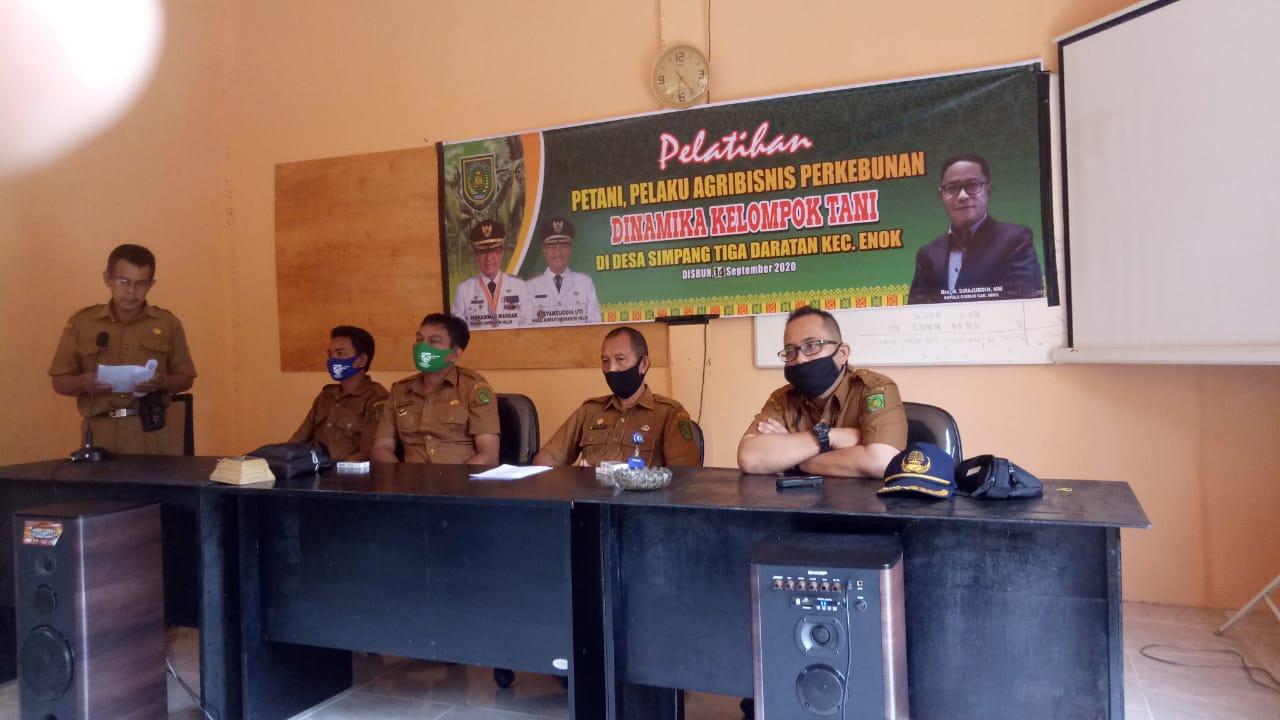 Disbun Inhil gelar Pelatihan kepada Pelaku Agribisinis dan Dinamika Kelompok di desa Simpang Tiga Daratan Enok