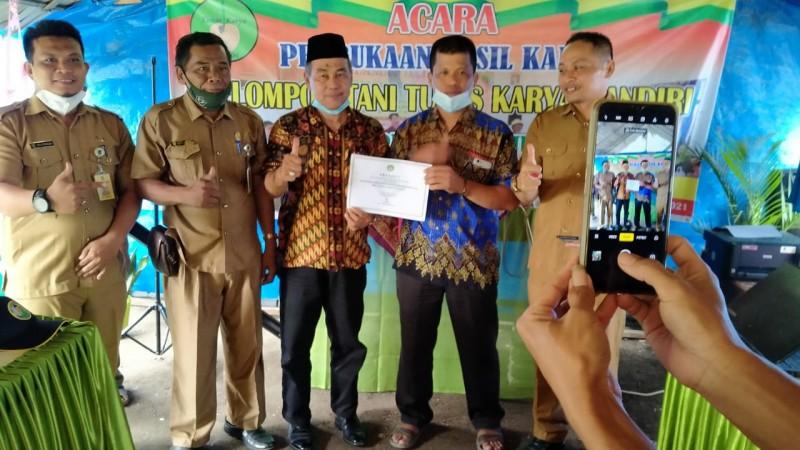 Launching Perdana Pupuk Kelapa da Sawit, Disbun Inhil Bangga Pada Kelompok Tani TKM Petalongan